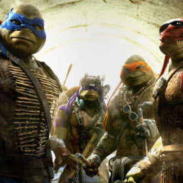 Who Are The Teenage Mutant Ninja Turtles and the New Movie 2014?