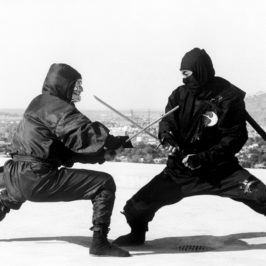 Who Were The Ninja People Part 3? Ninjas in Popular Culture